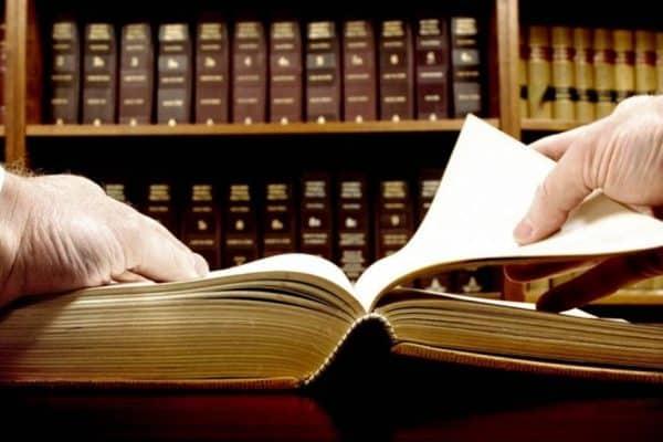 Estudios sobre Derechos Constitucionales